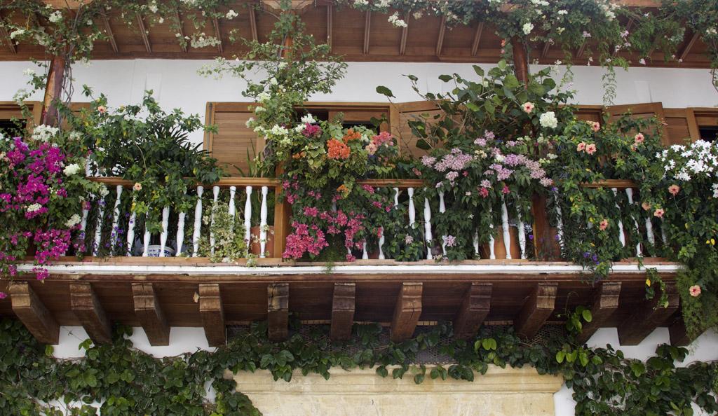 Картахена-де-Индиас,Колумбия путешествие фото отзыв-7