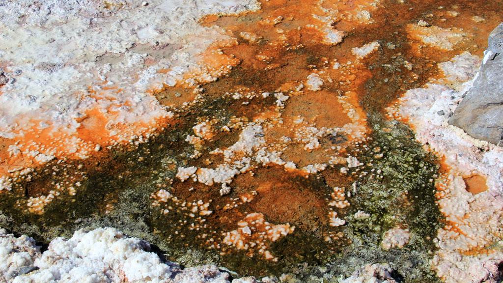 Лагуна Чакса пустыня Атакама Чили отзыв о поездке в блоге о путешествиях по Чили ChileTravelMAg-12