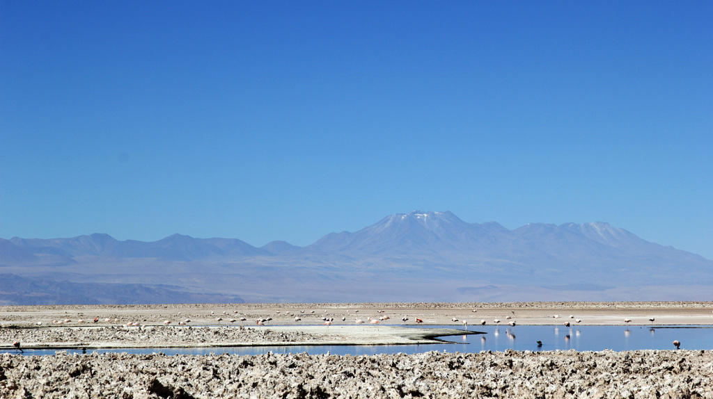 Лагуна Чакса пустыня Атакама Чили отзыв о поездке в блоге о путешествиях по Чили ChileTravelMAg-15