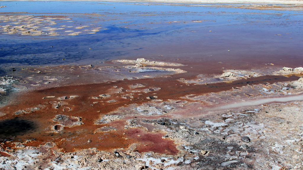 Лагуна Чакса пустыня Атакама Чили отзыв о поездке в блоге о путешествиях по Чили ChileTravelMAg-5