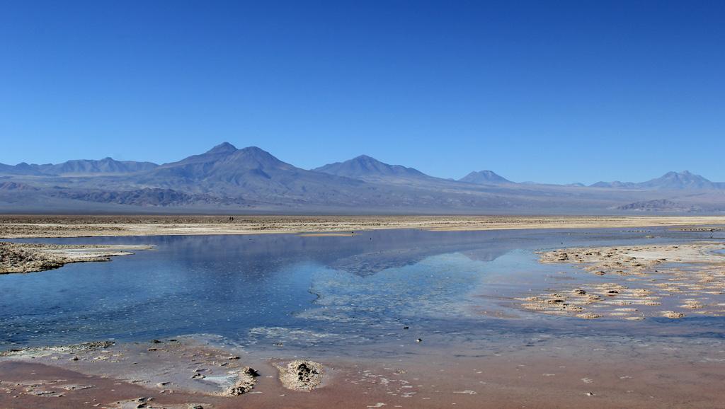 Лагуна Чакса пустыня Атакама Чили отзыв о поездке в блоге о путешествиях по Чили ChileTravelMAg-7