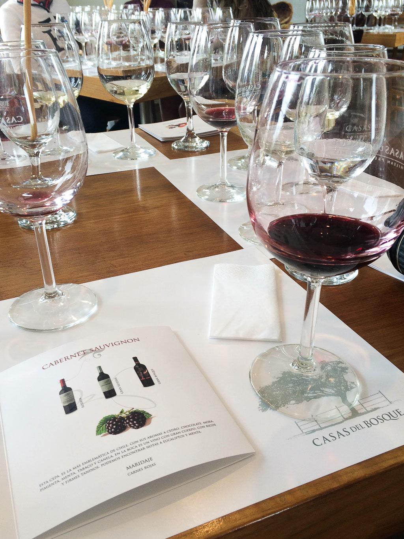 Винодельня Чили Viña Casas del Bosque долина Касабланка, отзыв о поездке-1
