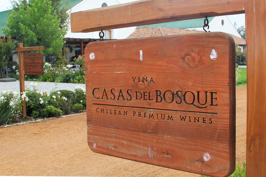 Винодельня Чили Viña Casas del Bosque долина Касабланка, отзыв о поездке-10