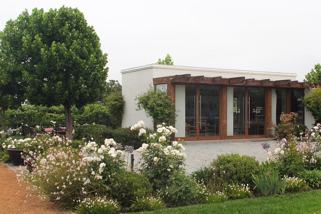 Винодельня Чили Viña Casas del Bosque долина Касабланка, отзыв о поездке-11