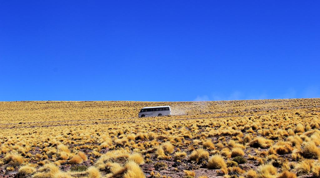 Лагуна Мисканти Атакама, Чили, отзыв в блоге о путешествиях по Чили ChileTravelMag-12