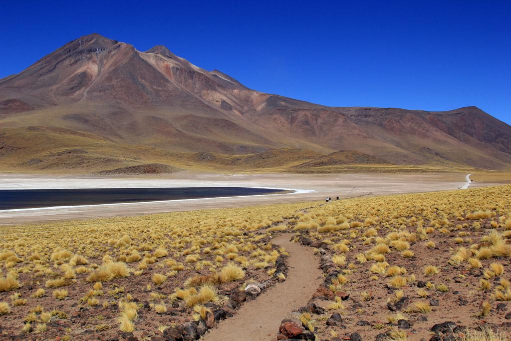 Лагуна Мисканти Атакама, Чили, отзыв в блоге о путешествиях по Чили ChileTravelMag-13