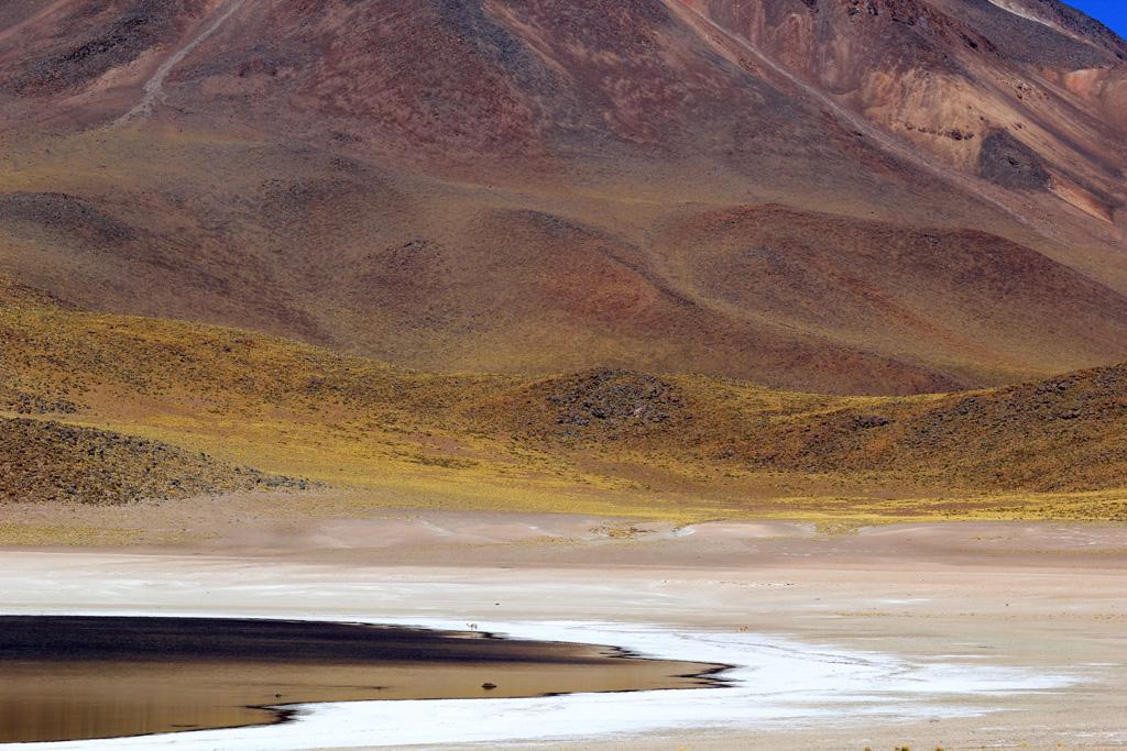 Лагуна Мисканти Атакама, Чили, отзыв в блоге о путешествиях по Чили ChileTravelMag-15