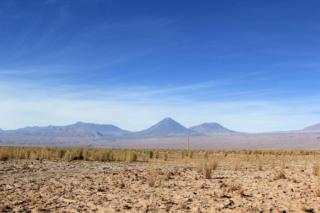 Лагуна Сехар Атакама в Чили отзыв в блоге-1
