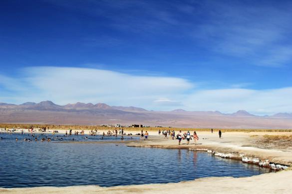 Лагуна Сехар Атакама в Чили отзыв в блоге-2