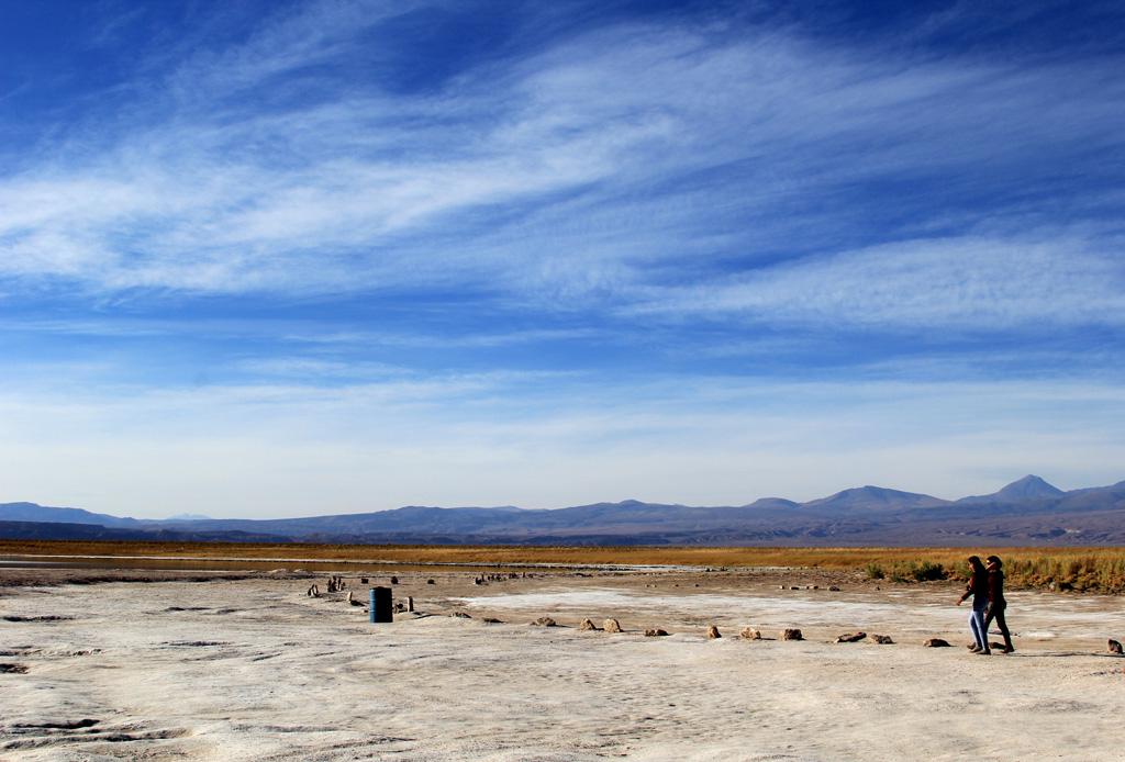 Лагуна Сехар Атакама в Чили отзыв в блоге-8