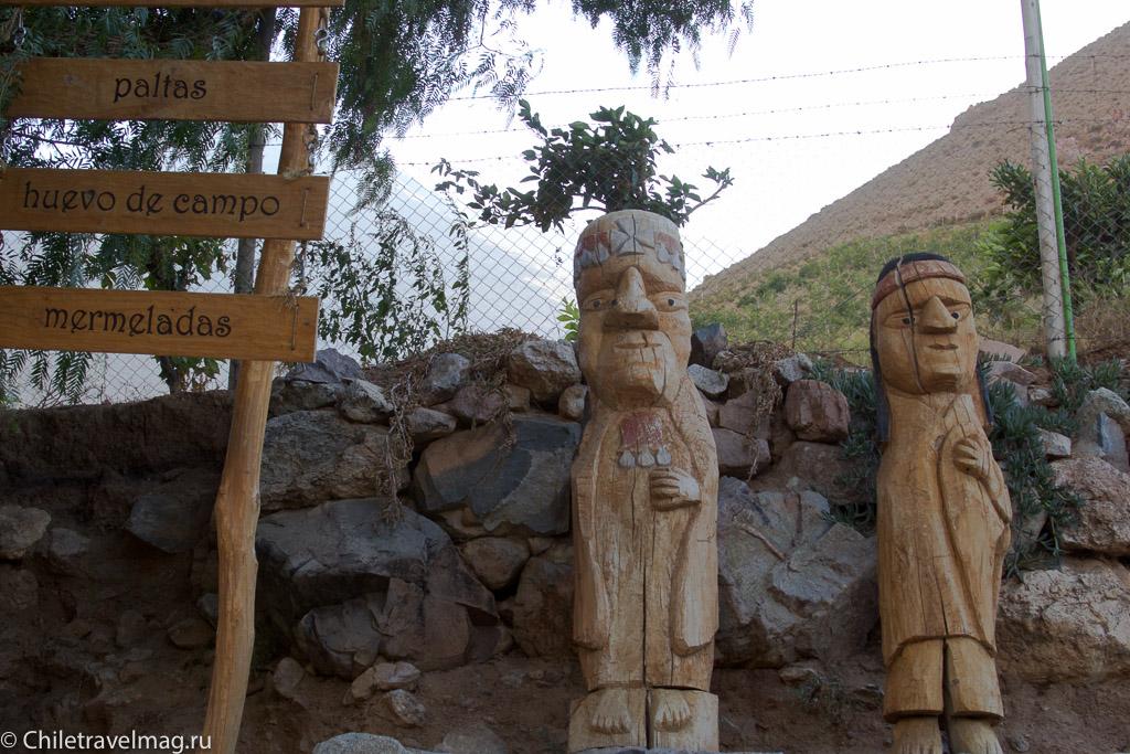 Долина Эльки в Чили, Valle de Elqui Chile, отзыв о поездке-1