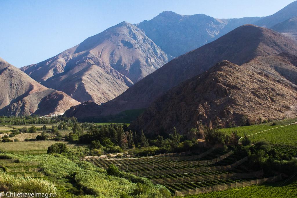 Долина Эльки в Чили, Valle de Elqui Chile, отзыв о поездке-11