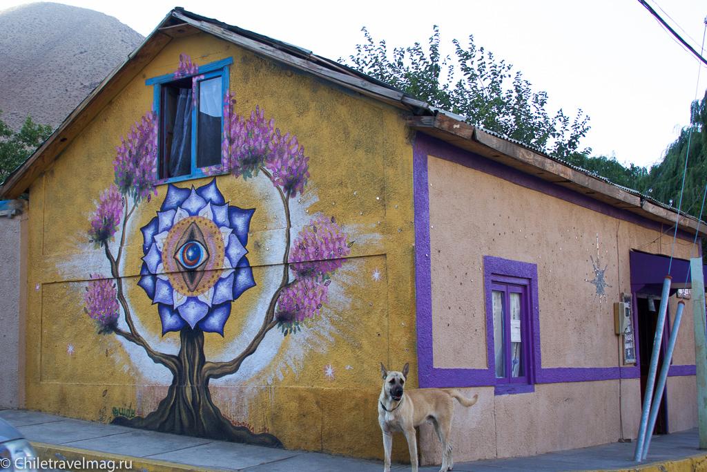 Долина Эльки в Чили, Valle de Elqui Chile, отзыв о поездке-8