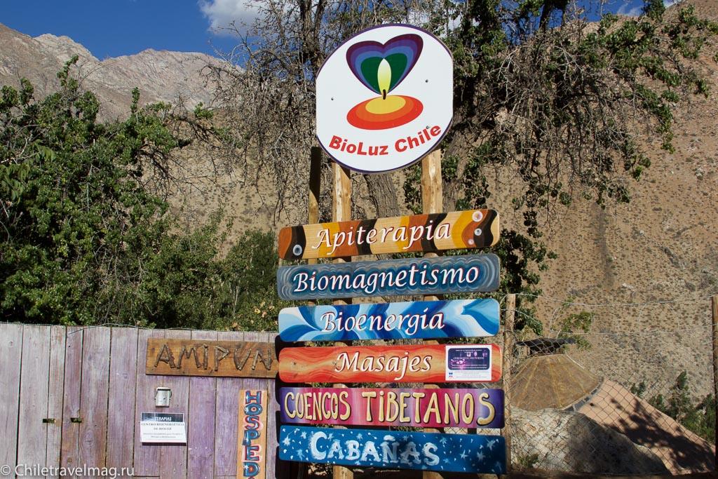 Петроглифы в Чили-8