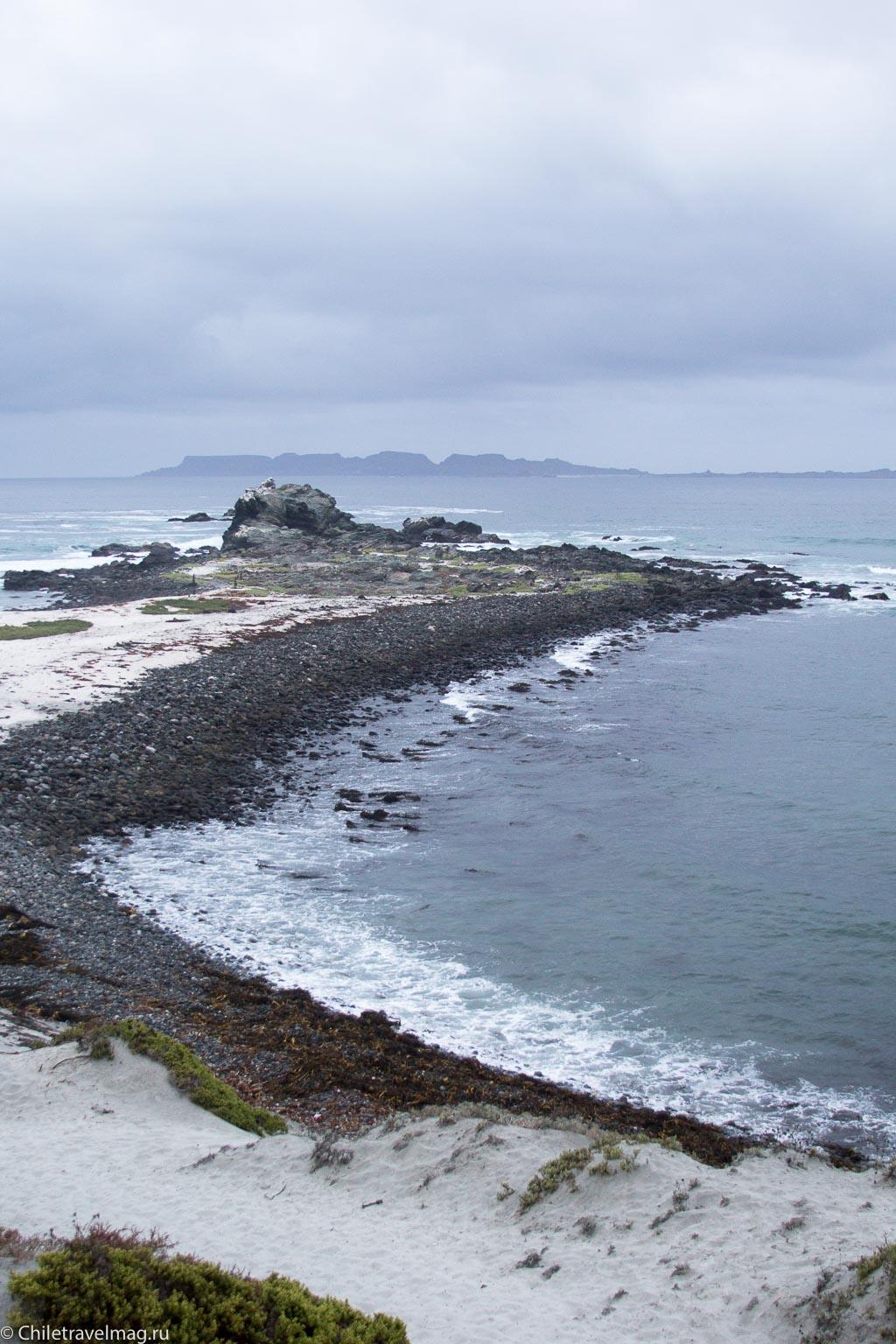 Поездка в Punta de Choros Chile-1