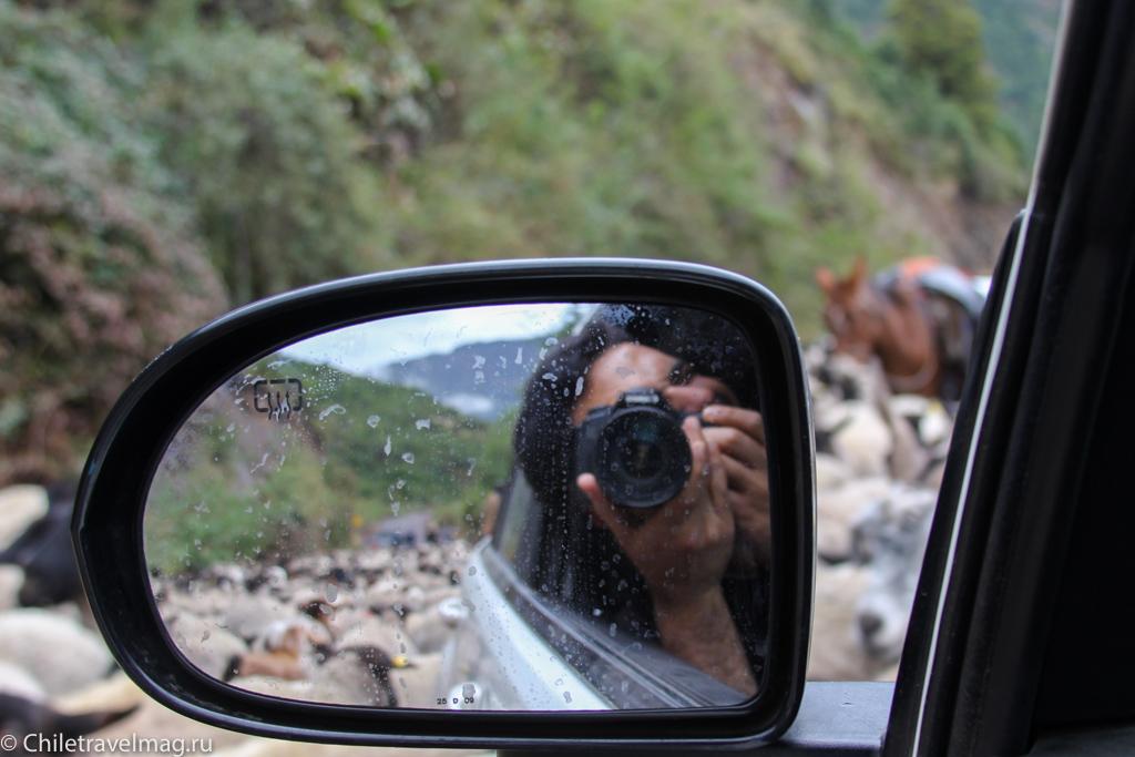 Поездка на машине по югу Чили, Romeral, Los Queñes-10