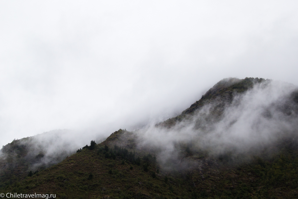 Поездка на машине по югу Чили, Romeral, Los Queñes-18