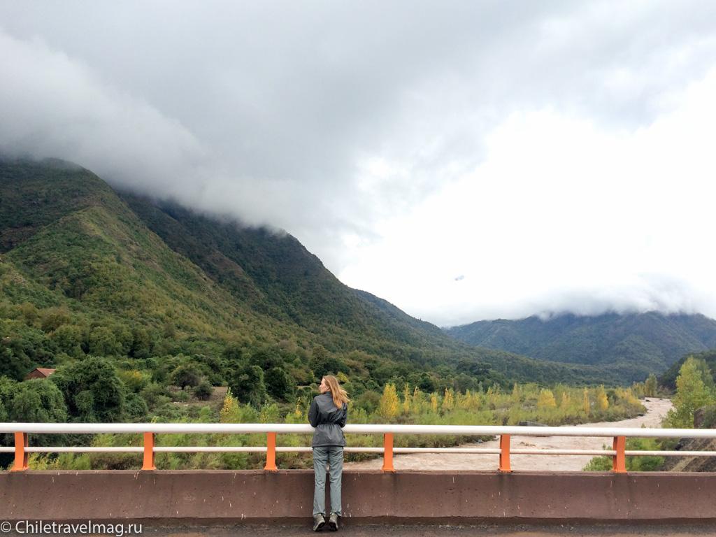 Поездка на машине по югу Чили, Romeral, Los Queñes-2