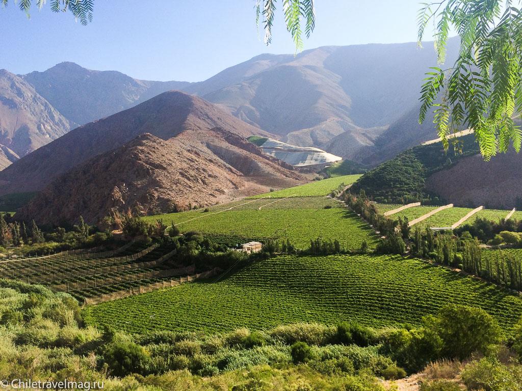 Долина Эльки в Чили отзыв о поездке