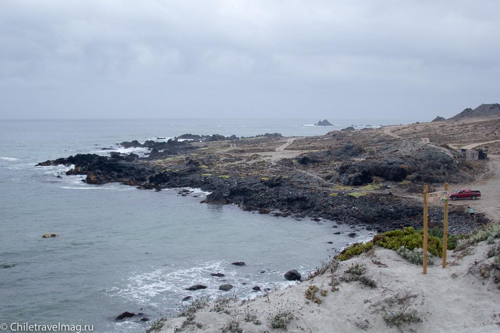 Punta de Choros, Chile, поездка в Пунта-де-Чорос в Чили, отзыв-2