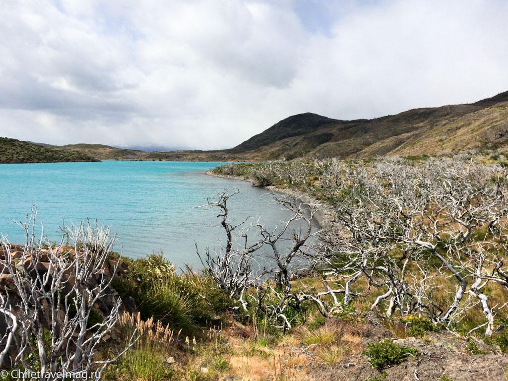 W трек Патагония Чили- треккинг в Торрес дель Пайне отзыв в блоге-5