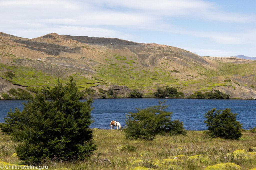 Чили Патагония,Торрес-дель-Пайне, отдых в Чили-Треккинг по маршруту W