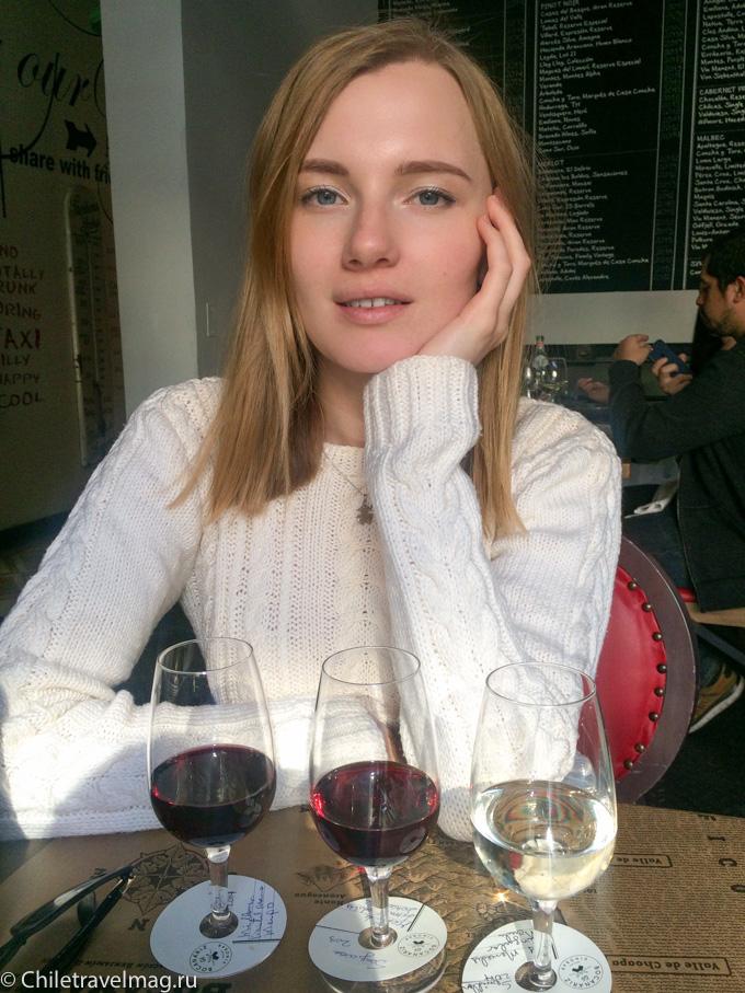 винобар чилийское вино в Сантьяго