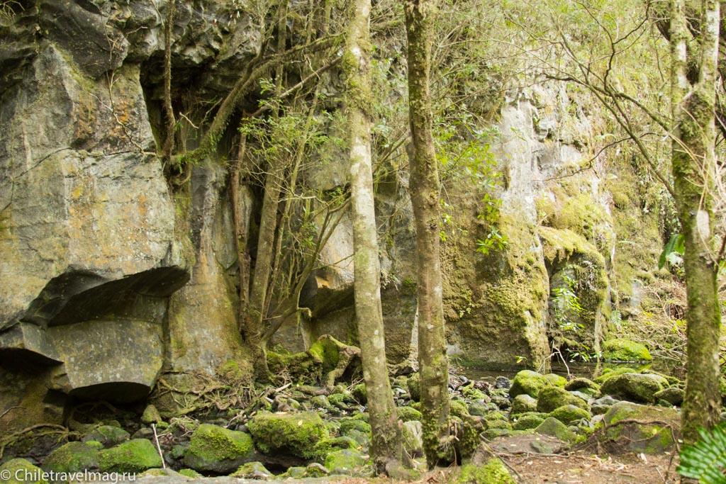 arturo-perez-rozales-park-saltos-petrohue-puerto-varas-chiletravelmag-blog-24