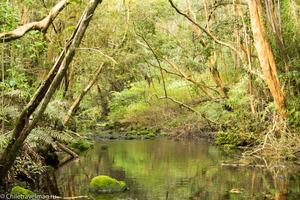 arturo-perez-rozales-park-saltos-petrohue-puerto-varas-chiletravelmag-blog-38