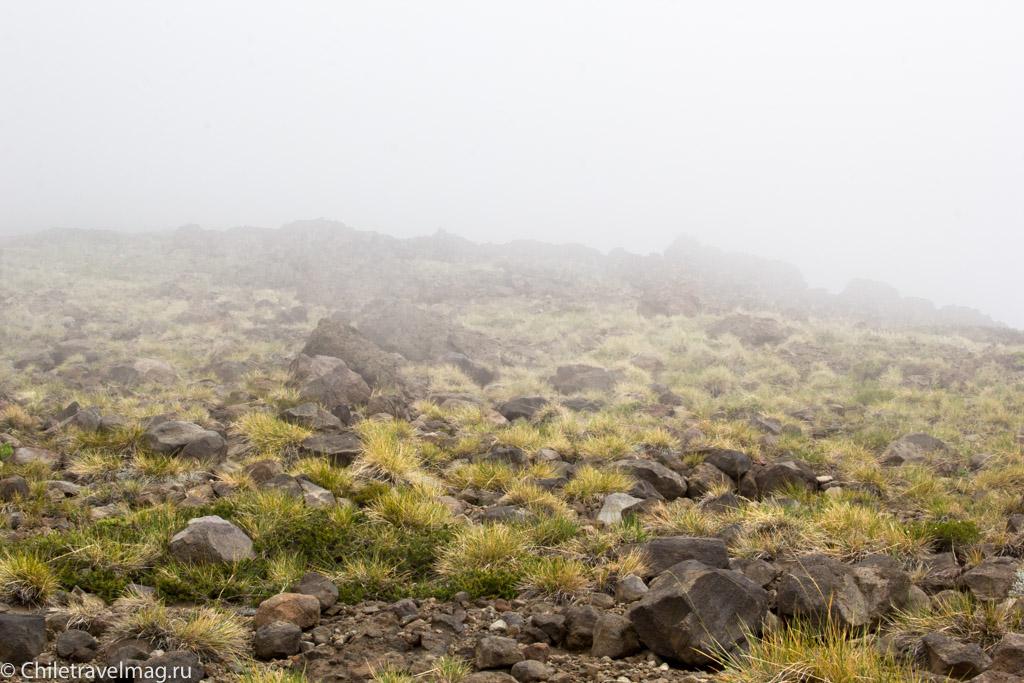 altos-de-lircay-trekking-12