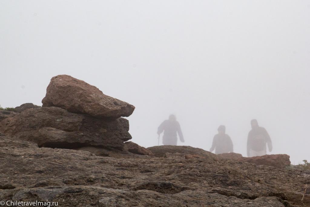 altos-de-lircay-trekking-14