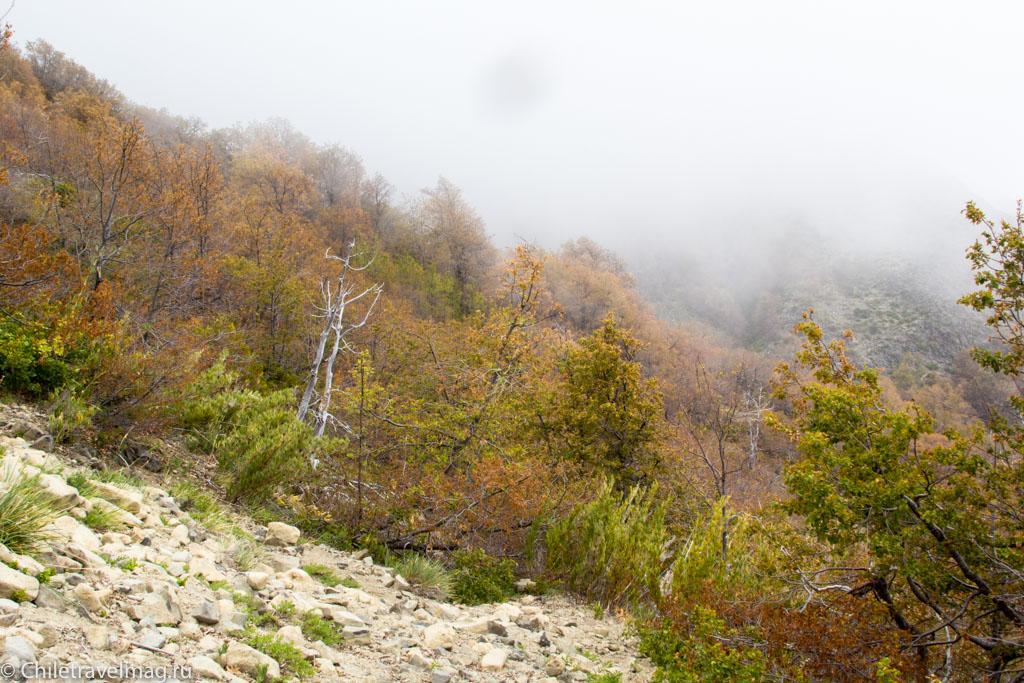 altos-de-lircay-trekking-8