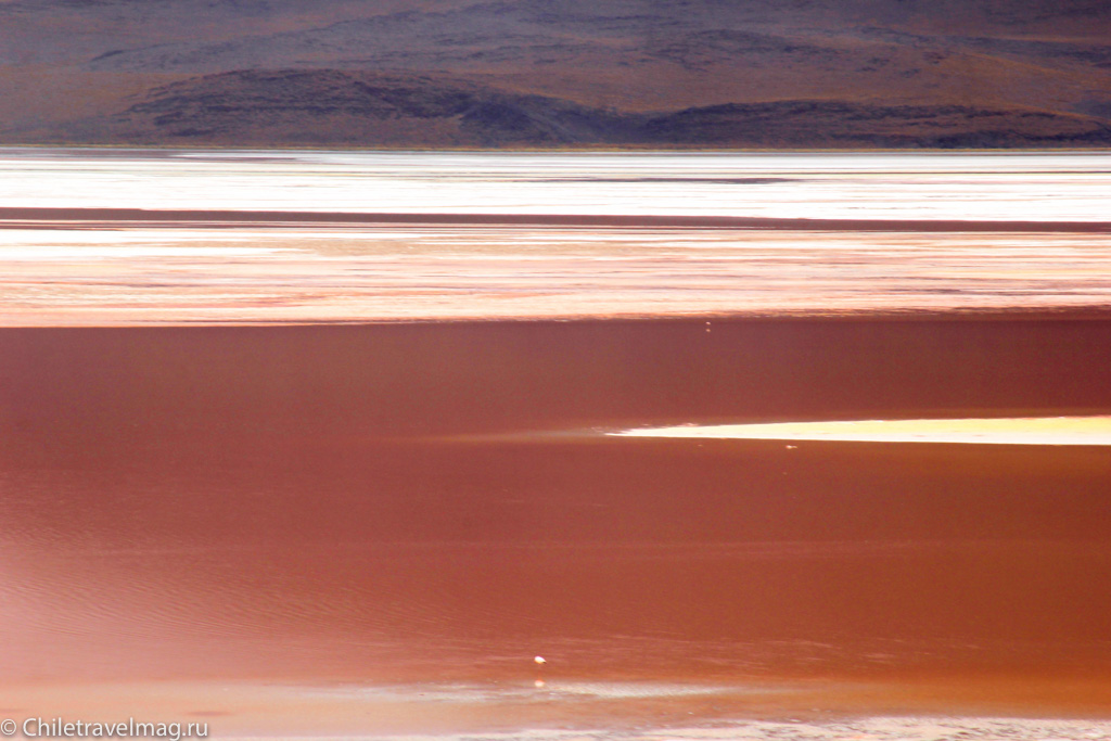 Лагуна Колорада в Боливии отзыв о поездке в блоге - Laguna Colorada in Bolivia
