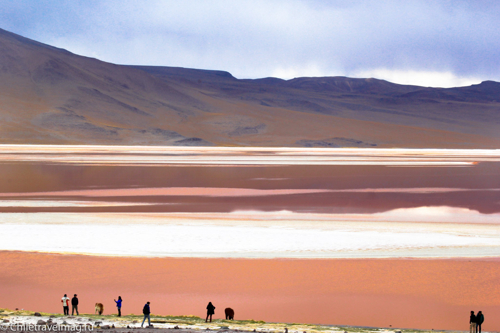 Лагуна Колорада в Боливии Laguna Colorada in Bolivia