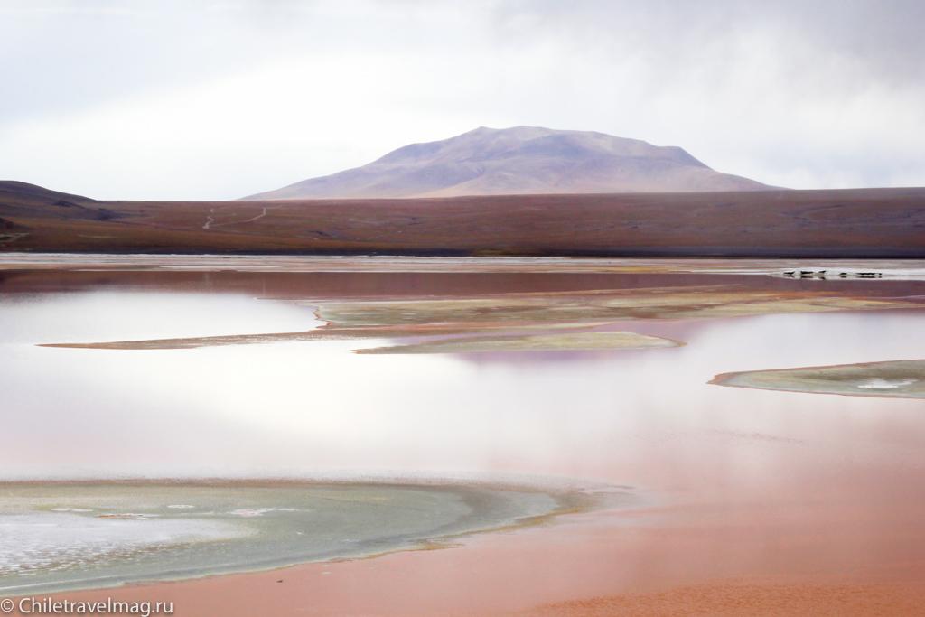 Поездка в Боливию Лагуна Колорада отзыв в блоге-22