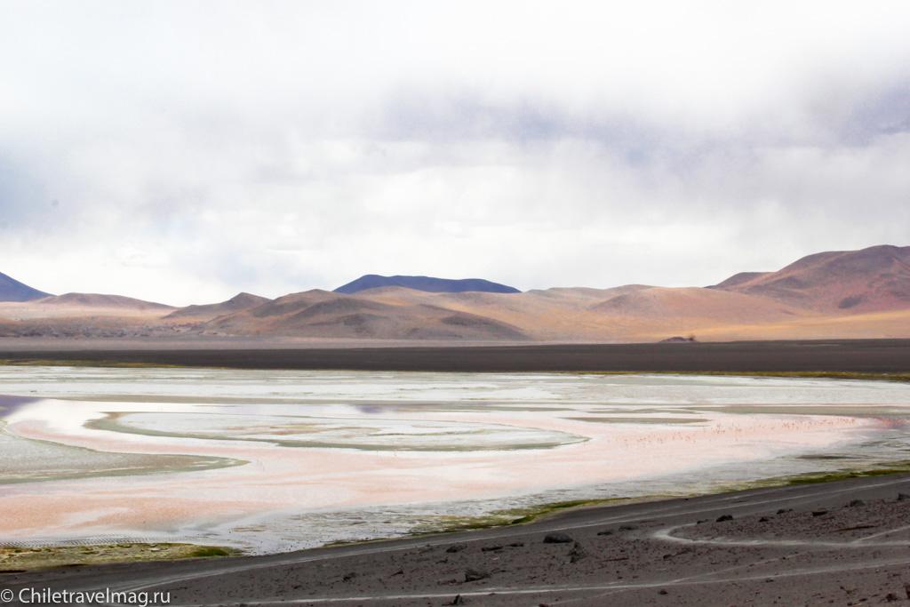 Поездка в Боливию Лагуна Колорада отзыв в блоге-26