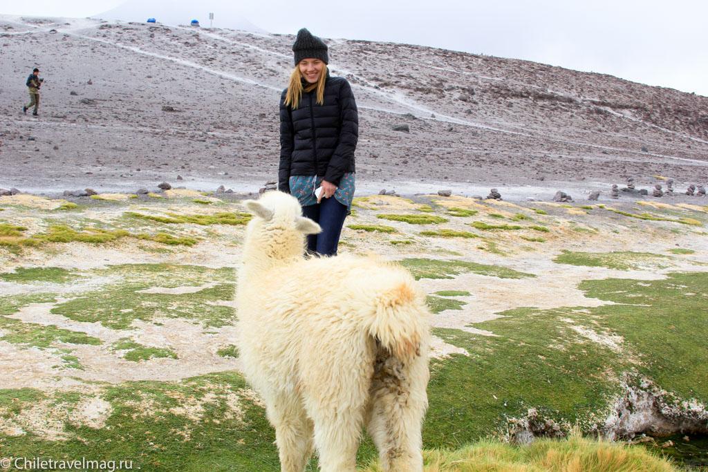 Поездка в Боливию Лагуна Колорада отзыв в блоге-4