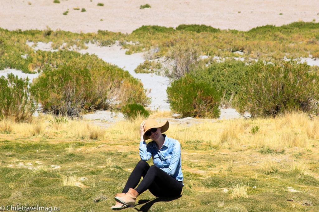Поездка в Боливию, Тур в Боливию, отзыв в блоге, долина Лас Рокас в Боливии-18