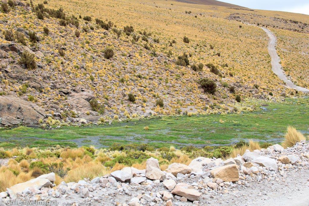 Поездка в Боливию, Тур в Боливию, отзыв в блоге, долина Лас Рокас в Боливии-2