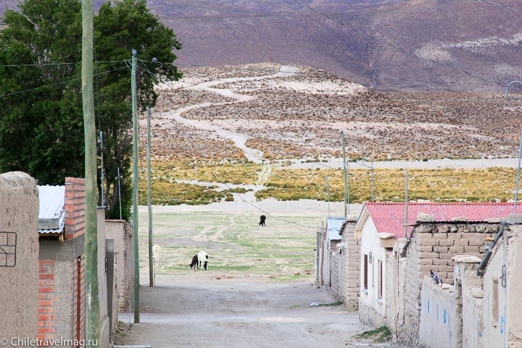 Поездка в Боливию, тур в Боливию, отзыв в блоге-19