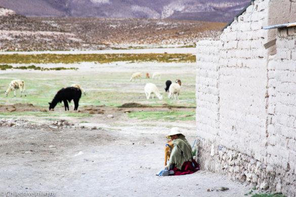 Поездка в Боливию, тур в Боливию, отзыв в блоге-23