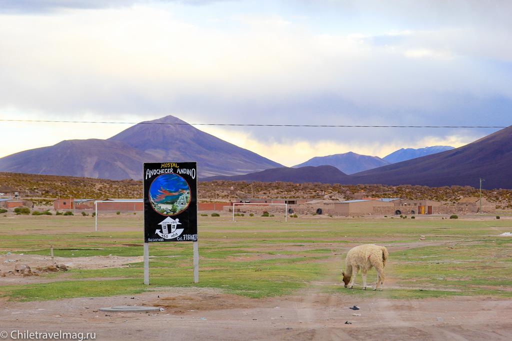 Поездка в Боливию, тур в Боливию, отзыв в блоге-25