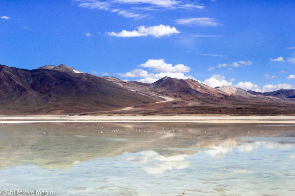 Тур в Боливию-лагуны-альтиплано-Боливия-отчет-в-блоге-Chiletravelmag-9