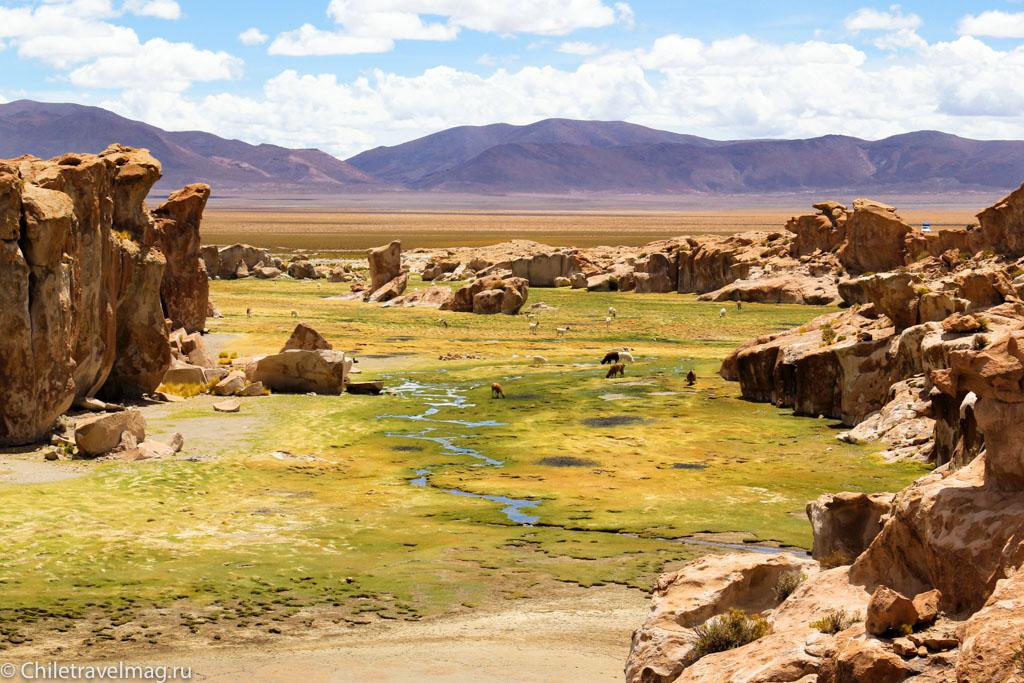 Valle de las Rocas поездка в Боливию отчет в блоге Chiletravelmag.ru -27
