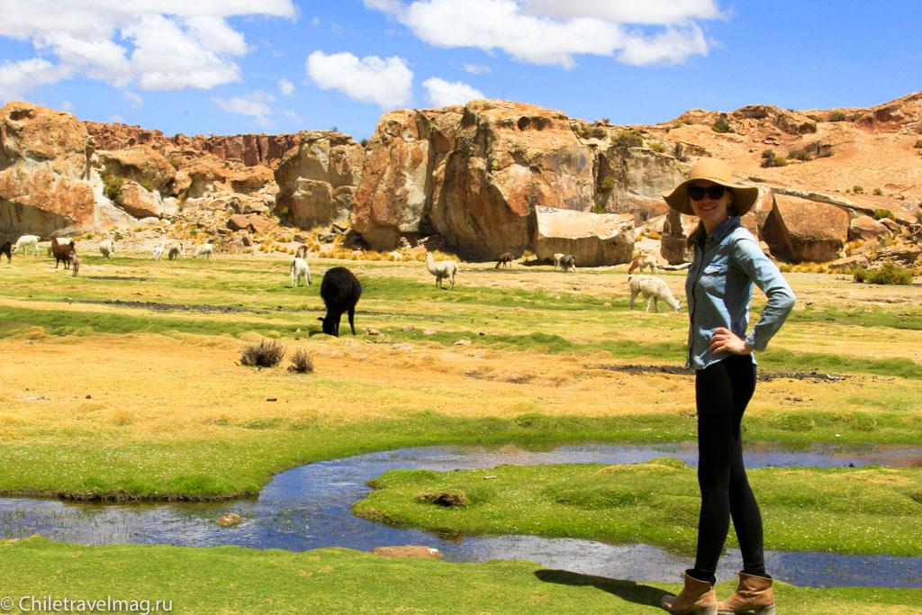 Valle de las Rocas поездка в Боливию отчет в блоге Chiletravelmag.ru -4
