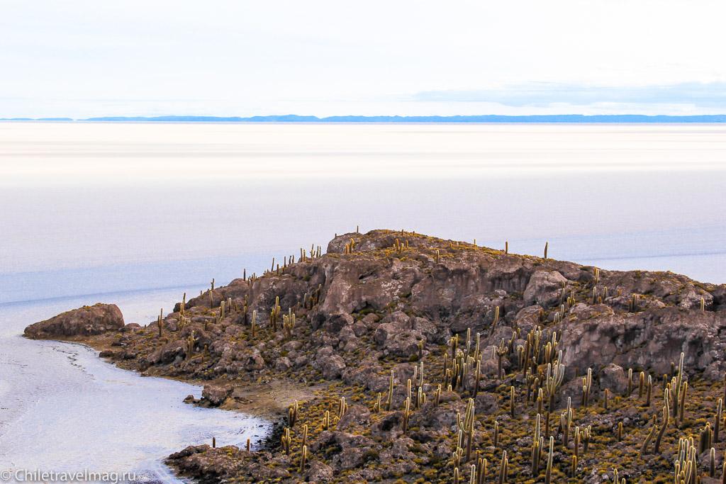 Остров с кактусами на Уюни отзыв - isla Incahuasi bolivia-10