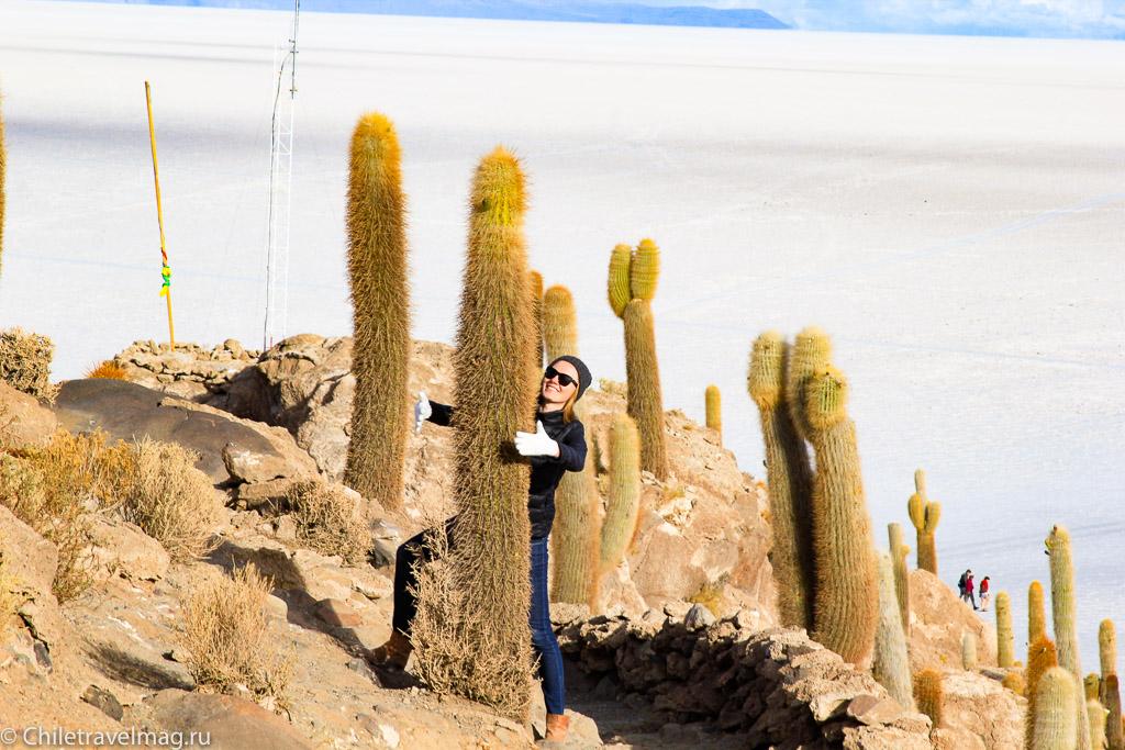 остров Инкауаси в Боливии
