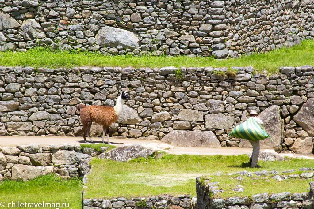 Мачу-Пикчу фото как добраться пост в блоге-мой опыт44