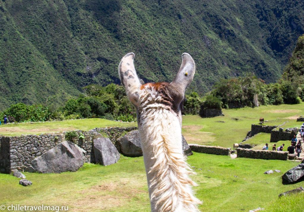 Мачу-Пикчу фото как добраться пост в блоге-мой опыт45