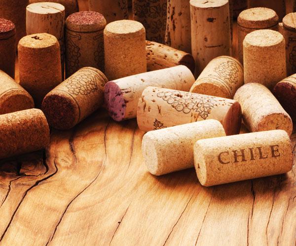 чилийское вино